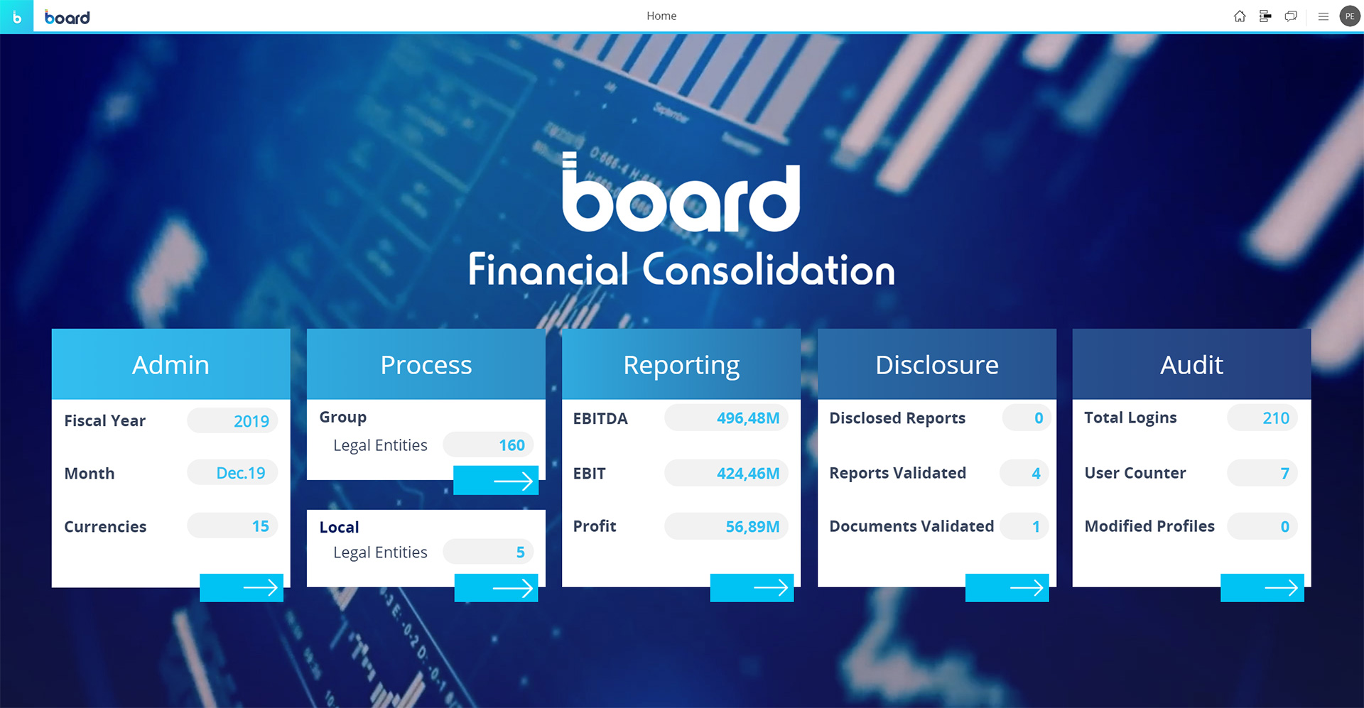 Sample of Financial Consolidation Software Screen