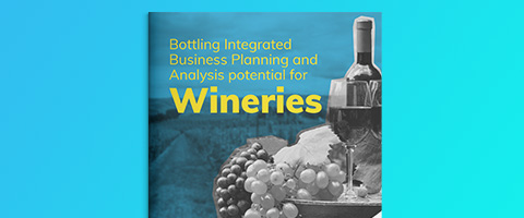 Bottling Integrated Business Planning and Analysis potential for Wineries