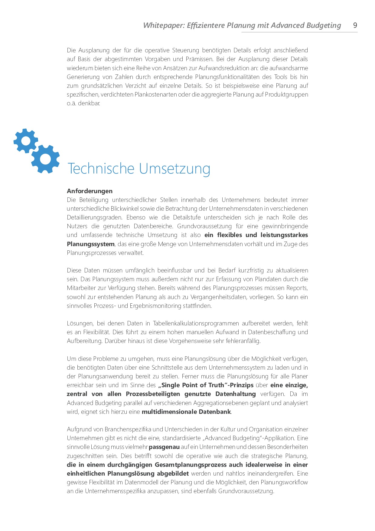 Effizientere Planung mit Advanced Budgeting | Page 9