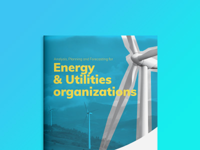 Analysis, Planning and Forecasting for Energy and Utilities Organizations