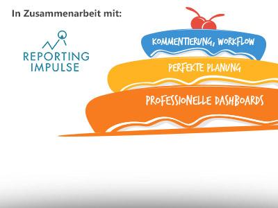 Webinar: Dashboards und Planung mit Profis für Profis!