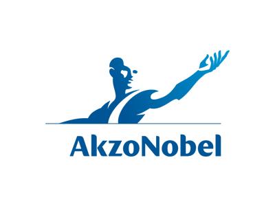 Akzo Nobel Distribution - Case Study