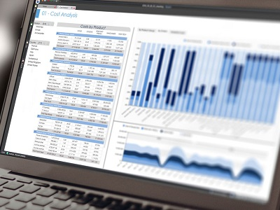 Analyse & Reporting mit Self-Service BI